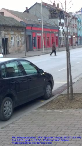 ptica zloslutnica na ulici